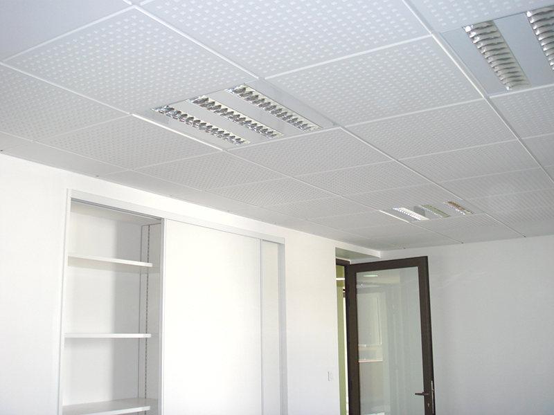 Faux plafond et travaux peinture bureaux departement rhone for Peinture faux plafond