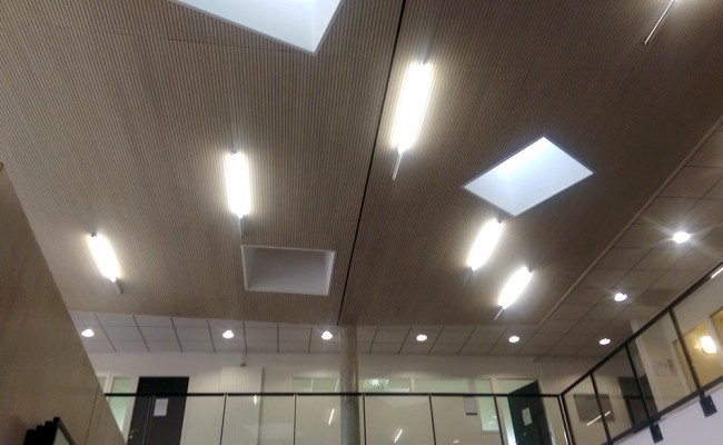 Faux plafond IUT Bron